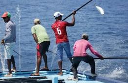Fisherman aboard a vessel catching skipjack tuna. PHOTO: GEMANAFUSHI MASVERIN