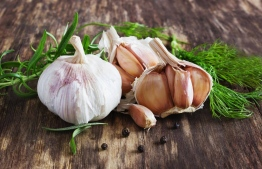 Consuming garlic, while great for lowering cholesterol and blood pressure, is not a definite preventive measure against any viral or bacterial disease. PHOTO: MIHAARU