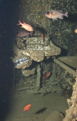 Inside the wreck of MV Victory off the coast of Hulhule. PHOTO: MOHAMED SEENEEN