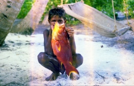 A Maldivian boy holding a reef fish. Children learned how to fish while they were fairly young. PHOTO: FRANK BURNABY