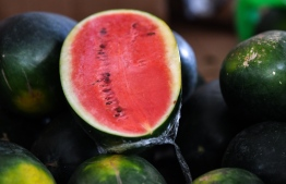 Watermelons being sold at the local market, a particularly featured element of Ramadan meals in Maldives. PHOTO: MIHAARU