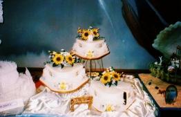 Some of Jisthee's award-winning cakes on display. PHOTO JISTHEE