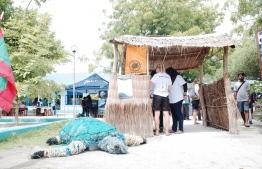 Vaavoshi Turtle Festival held at the Hithadhoo School. PHOTO: ABDULLA JUMAN MOHAMED.
