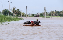 A farmer helps his cattle to wade through floodwaters across a road near Jamkhandi Taluk at Belgaum district of Karnataka state situated about 525 kms north of the south Indian city of Bangalore on August 11, 2019. (Photo by STR / AFP)