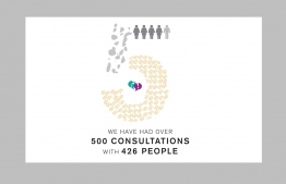 Statistics of consultations conducted by Family Legal Clinic (FLC). PHOTO: FAMILY LEGAL CLINIC