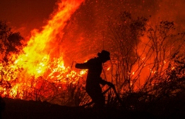 A firefighter extinguishes a fire in a forest at Rambutan village, in Ogan Ilir, South Sumatra province, on September 11 , 2019. - Malaysia has stepped up pressure on neighbouring Indonesia to tackle huge blazes tearing through its rainforests and smothering Southeast Asia in smog, as fires typically started to clear land for crops send diplomatic tensions soaring. (Photo by ABDUL QODIR / AFP)