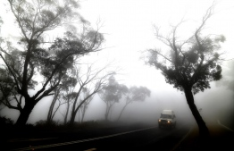 """A car makes its way through thick fog mixed with bushfire smoke in the Ruined Castle area of the Blue Mountains, some 75 kilometres from Sydney, on January 11, 2020. - Massive bushfires in southeastern Australia have a """"long way to go"""", authorities have warned, even as colder conditions brought some relief to exhausted firefighter and communities. (Photo by SAEED KHAN / AFP)"""
