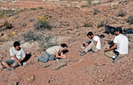 Handout picture released by the Argentine Museum of Natural Sciences showing researchers working on an excavation in El Cuy, Rio Negro province, Argentina, on February 16, 2018. - The remains of a new species of carnivorous dinosaur that dwelled in the Argentinian Patagonia 90 million years ago were found by a team of paleontologists. With four meters of length, the new dinosaur was named Tralkasaurus cuyi, informed the Scientific Divulgation Agency of the National University of La Matanza on February 13, 2020. (Photo by - / Museo Argentino de Ciencias Naturales / AFP) /