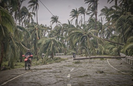 Motorists make their way through uprooted coconut trees and electric pylons along the highway near Oras town, Eastern Samar province on May 15, 2020, a day after Typhoon Vongfong hit the town. - Typhoon Vongfong has dumped heavy rains and torn off roofs since it roared ashore on central Samar island on May 14, with hundreds of thousands of vulnerable people in its path on the coast or in flimsy homes. (Photo by Alren BERONIO / AFP)