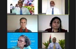 Screenshot taken during the webinar hosted to launch the multi-dimensional poverty index. PHOTO: NATIONAL BUREAU OF STATISTICS