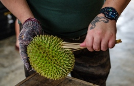 This picture taken on July 8, 2020 shows a worker cleaning a durian in Kuala Lumpur. - When a coronavirus lockdown confined Malaysians to their homes, street traders selling durians moved their pungent produce online -- and have been enjoying an unexpected spike in demand. PHOTO: MOHD RASFAN / AFP