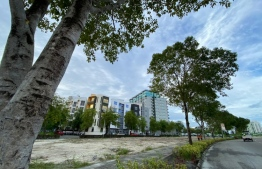 The land allocated for the Diplomatic Enclave in Hulhumale'. PHOTO: MIHAARU