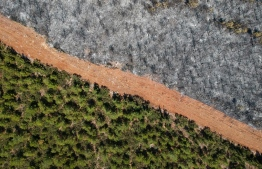 This aerial picture taken on August 7, 2021, shows a track delimited burnt trees to a forest in Mugla district as Turkey struggles against its deadliest wildfires in decades. - Greece and Turkey have been fighting devastating fires for more than a week as the region suffers its worst heatwave in decades. Officials and experts have linked such intense weather events to climate change. (Photo by Yasin AKGUL / AFP)